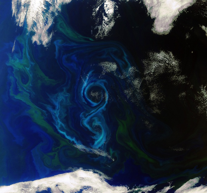 What the oceans do for us: One phytoplankton's waste….