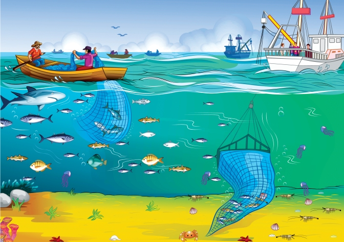 The unintended consequences of simplifying the sea: making the case for complexity