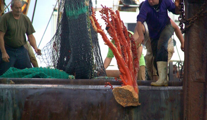 How deep is too deep for commercial fishing?