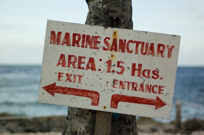 Marine Protection Goals Are on Target, But Still Not Enough