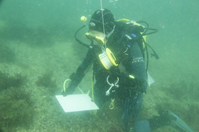 Multi-tasking underwater